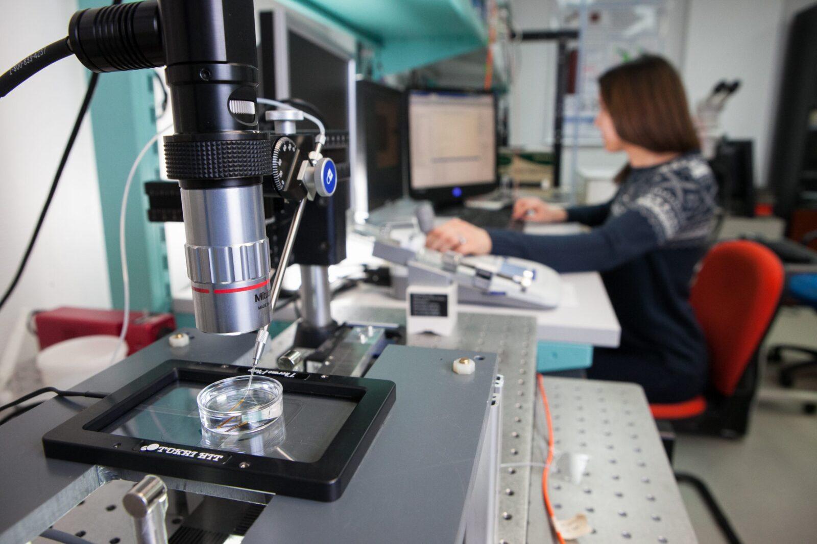 Caractérisation multimodale des ovocytes (CNRS)
